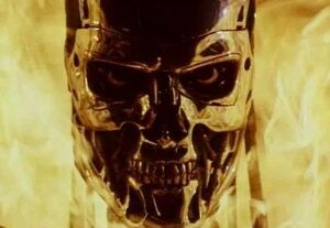 Terminator in flames 8645
