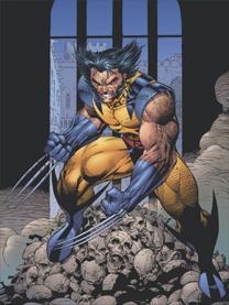 WolverineLeeLitho