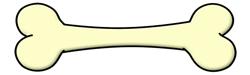 Femur Bone 8585