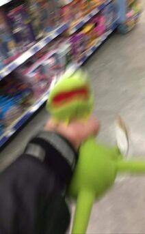 Kermit D Frog Here