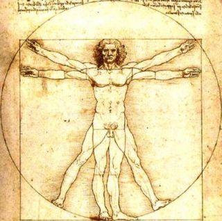 Vitruvian man 5456