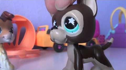 Lps More Than That (Season 2- Part5) 12 Not What It Seems
