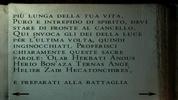 Translate (6)
