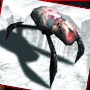 Arachnocid