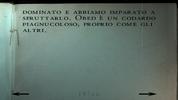 DiarioAlAn (19)