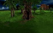 Secret entrance tree
