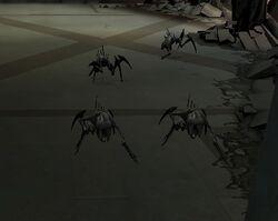 Ratz swarm