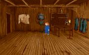 Parrot room1