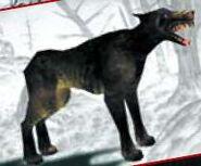 Perro de la oscuridad
