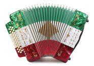 11-rossetti-31-button-12-bass-diatonic-deluxe-accordion-red-white-green-1