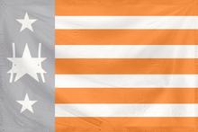 Turinian Republic Flag (real)