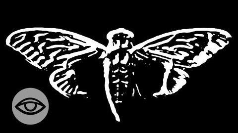 Cicada 3301 The Internet's Most Secret Organization?