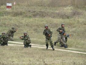 Romanian Armed Forces in action