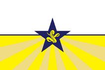 Wessexconfederacyflag