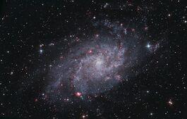 1200px-M33 - Triangulum Galaxy (1)