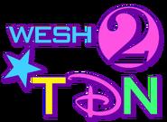 WESH 2010 logo TU's vision