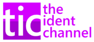 TIC 2008 logo
