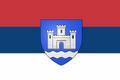 SAO Branicevo - zastava
