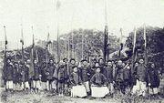 Qing army Sino-French war