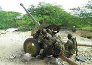 Chokwe Artillery