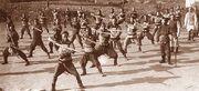 Sty-Qing Dynasty troop