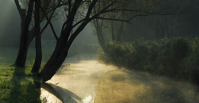 File:Morning at the stream.JPG