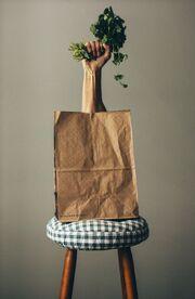 Bag-hand