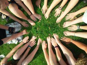 Team-green