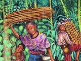 Gazdasági antropológia