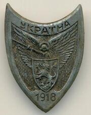 Нагрудний і кашкетний знак Соборної України