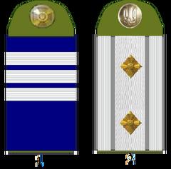 Козацькі погони