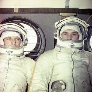 Горбатко и Кубасов