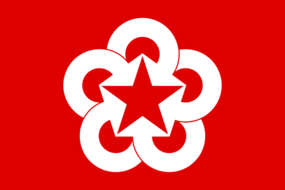 Flag of Comecon