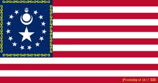 Flag of the United States 1817FriendshipMongolia