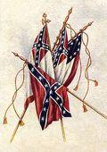 CSA flags