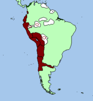 Expansion to the coast and amazonian vassalization