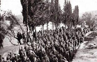 Сербская армия в Эпире