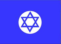 NI Flag (Toyotomi)