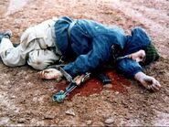 شهید ایرانی