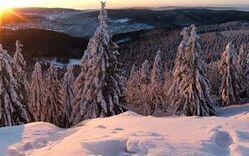 Thüringerwald