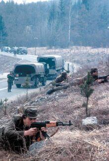 Войска территориальной обороны Словении