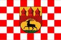 Flag of Stolberg (The Kalmar Union)