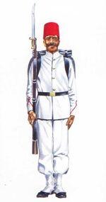 Мухаммед Али воин