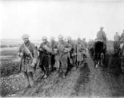 Canadians Retreating WWI (No Napoleon)