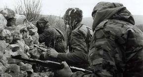 Боснийские солдаты