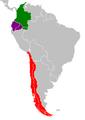 Suramerica Fronteras