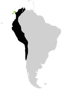 MapSAm