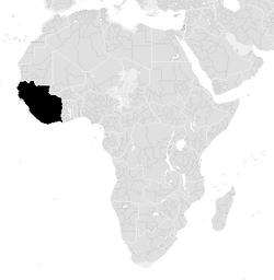New Afrika Viva (PMII)