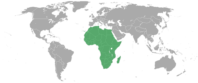 File:AfricaAA.png