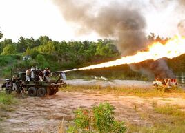 Flamethrower-cannon-picture-08